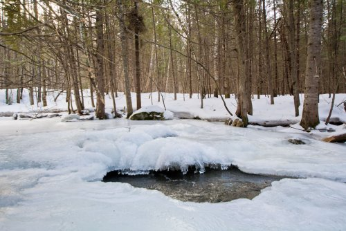 Rivière l'hiver
